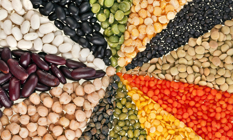 Peut-on ne consommer que des protéines d'origine végétale et être en bonne santé?