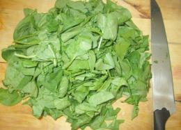 épinards émincés pour farce végétalienne des cannellonni