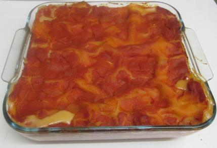 lasagne vegan cuite